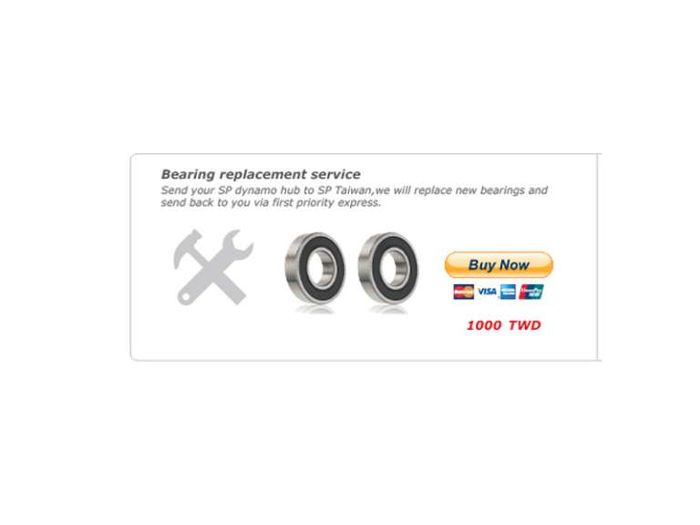 SP Dynamo bearing replacement service