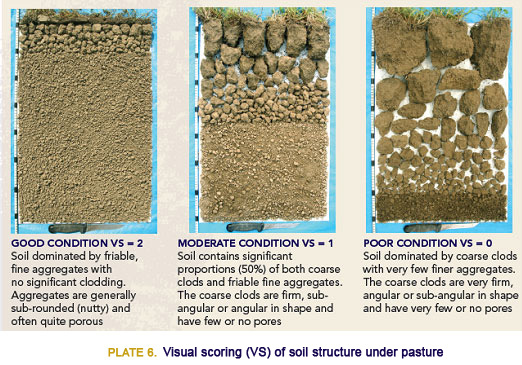Soil health series soil structure for What is the composition of soil