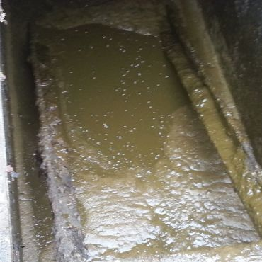Effluent treated with EM