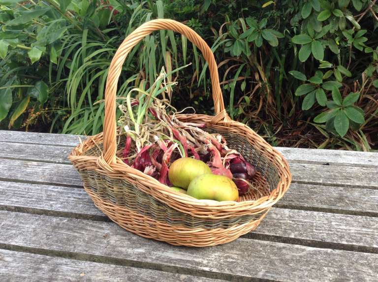 Produce  basket