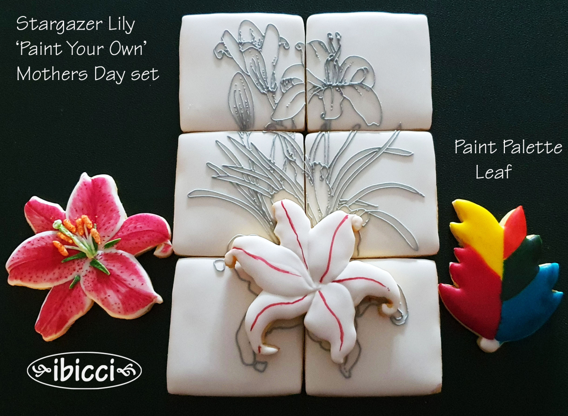 Mothers Day Stargazer Lily Paint Your Own - part of a boxed set