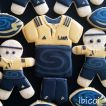 ibicci Hurricanes Birthday cookies for a 5yo