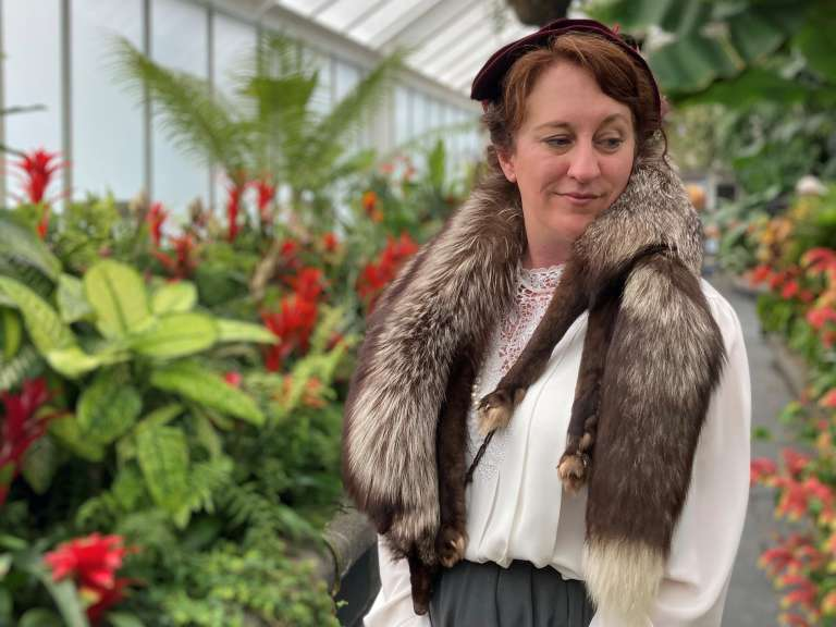 Miss Brill in the Begonia House